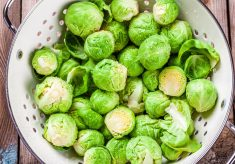 CRUCIFEROUS PART 2: Don't like Brussels Sprouts?