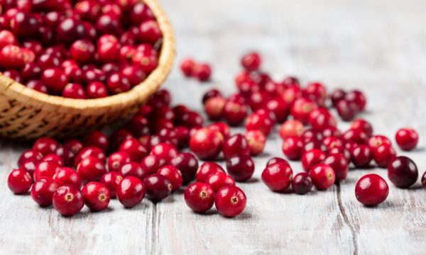 The Fall Craze for Cranberries