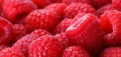 Raspberry Nutrition Facts