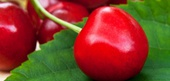 Cherries History and Factoids