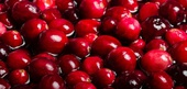 Cranberries Nutrition Facts