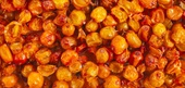 Seabuckthorn Selection, Storage, and Handling