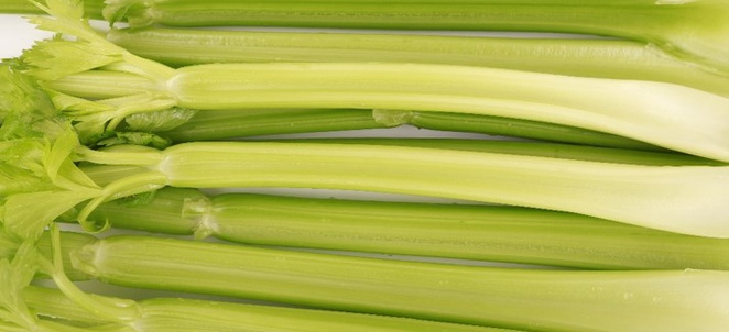 Celery Selection, Storage, and Handling