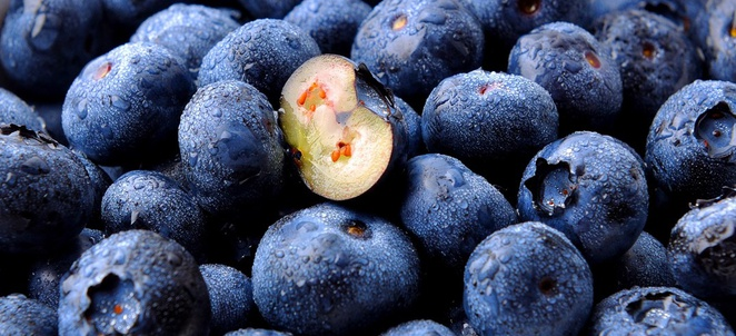 Blueberry Recipes and Flavor Pairings