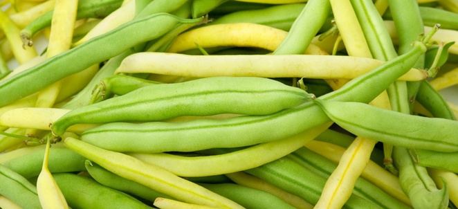 Beans - Fresh, Nutrition Fact