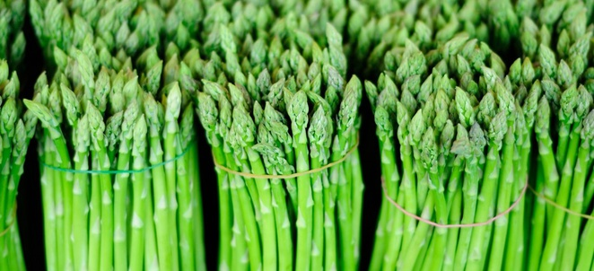 Asparagus Selection, Storage and Handling